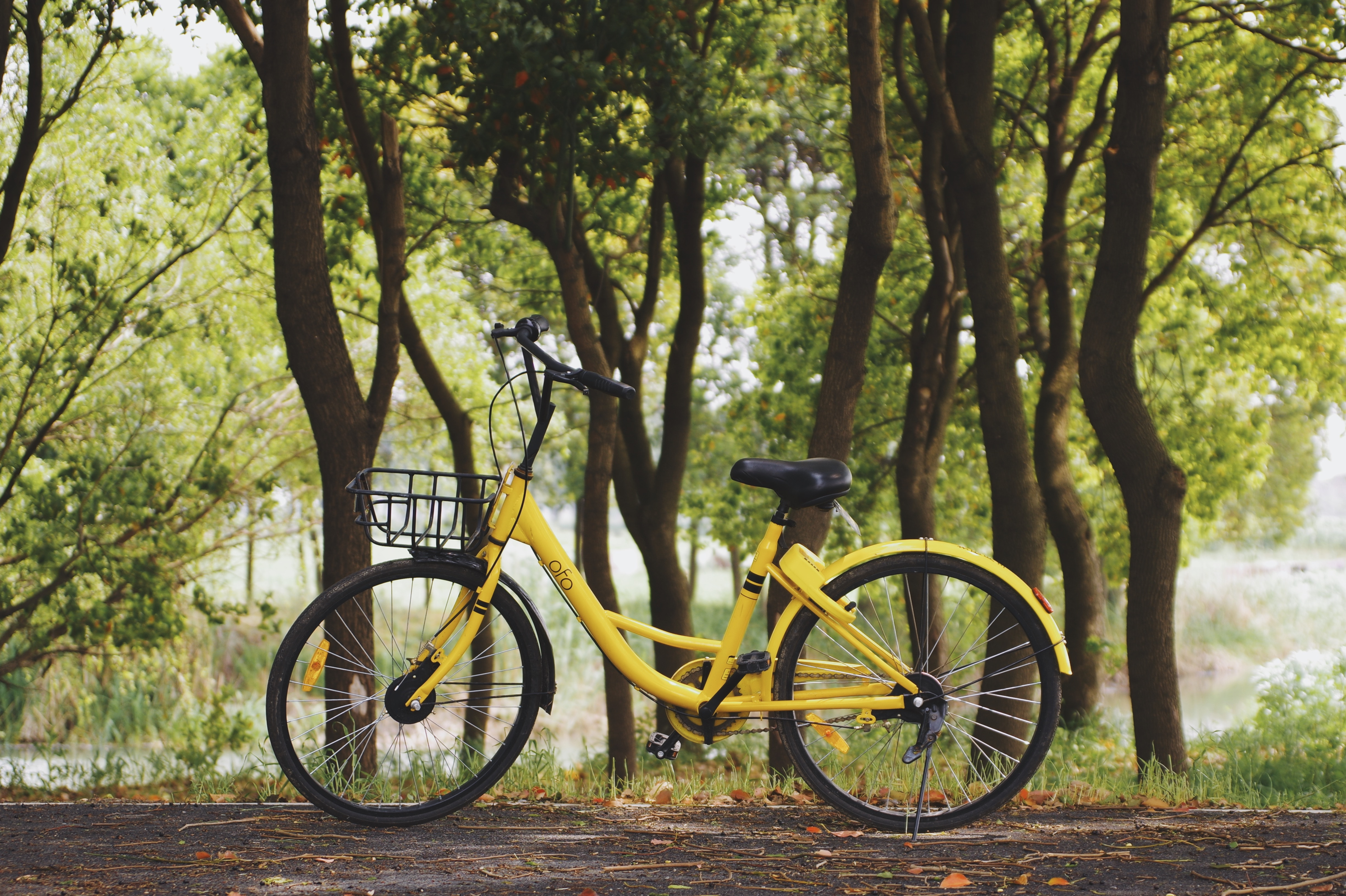 8 Benefits Of Using Electric Bikes - Peak Adventures Blog